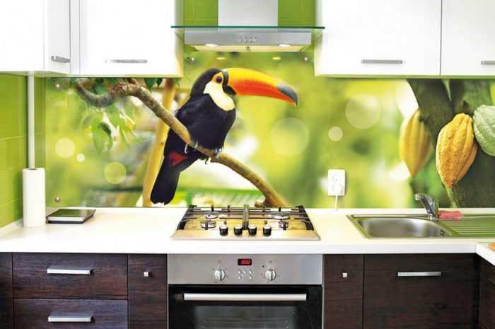Скинали для кухни — преимущества и недостатки стеклянных панелей. Лучшие варианты дизайна фартука в фото-обзорах