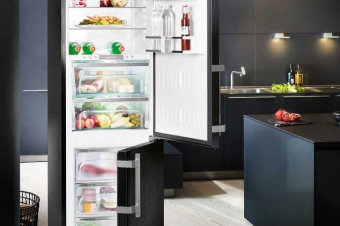 Какой холодильник лучше: основные функции холодильников. Разновидности конструкций популярных моделей + 180 фото